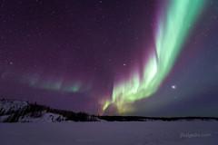 Aurora borealis [2698] (josefrancisco.salgado) Tags: 1424mmf28g d5 nikkor nikon northernlights astrofotografía astronomy astronomía astrophotography aurora auroraborealis aurorae auroras cielonocturno estrellas exposiciónlarga frozenlake iceroad lago lagocongelado lake longexposure night nightsky stars fortsmithunorganized northwestterritories canada ca