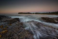 North Newport Sunrise (RoosterMan64) Tags: australia longexposure nsw northernbeaches rockshelf rocks seascape sunrise sydney