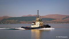 Tug (Rollingstone1) Tags: boat tug hills landscape helensburgh greenock scotland sea firthofclyde glenfruin marine water seascape dockbay vessel