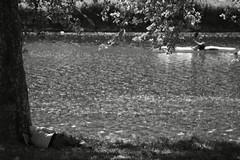 lungo il fiume (duegnazio) Tags: gaudenzio canon 40d 2017 biancoenero bn bw blackandwhite blackwhite streetphotography firenze arno canoa dormire fiume