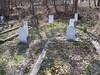 20170320_151605 (h.alfatli) Tags: bg 2017 mezar kabristan neofit bozveli bozvelievo alfatlı köyü momçilgrad