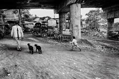 DSC02355 (Amlan Sanyal) Tags: india incredibleindia children streetphotography candid siliguri sony amlan rx100m3 blackandwhite