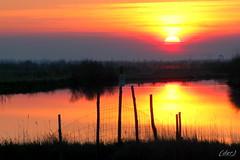 """___ tramonto! ___ """"explore! """" (erman_53fotoclik) Tags: tramonto sunset erman53fotoclik sole stella astro riflesso rosso caldo pali rete particolare scorcio"""