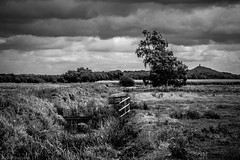Of myth and legend (Anthony P26) Tags: category england landscape places shapwick somerset travel uk unitedkingdom english british greatbritain britain mono monochrome blackandwhite whiteandblack bw grass river gate fence tree hills trees pastures fields landscapephotography travelphotography clouds cloudysky greyclouds rainclouds tamron70300 canon70d canon outdoor grasses drain watercourse