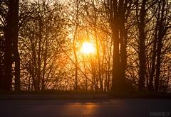 Superga, 29.03.2017-10 ( YariGhidone ) Tags: rosso avventura van life vanlife torino landscape superga camper sunset sunrise alba paesaggio top