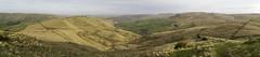 South Head Panorama (l4ts) Tags: landscape derbyshire peakdistrict darkpeak panorama southhead mountfamine kinderscout kinderlowend moorland