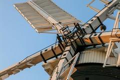 Holgate Windmill, April 2017 - 8