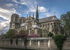 Notre Dame (Ludo_Jacobs) Tags: paris france europe architecture travel city notredame church building