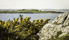 Murray's Isles