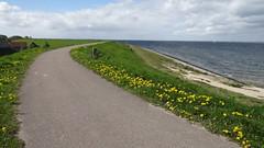 Oosterschelde dyke (marieckejanssen) Tags: blindphotographer oosterschelde zeeland water dijk dyke
