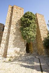 Alcazaba of Malaga IV (rschnaible) Tags: malaga spain espana europe sightseeing outdoor tour tourist alcazaba tower fort fortress building architecture