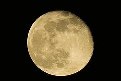 Moon 4/12/17 (AncasterZ) Tags: moon moonshot moonlight moonrise fullmoon tamrondi70300mmusd laea1 apsc