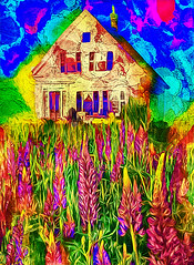 Loving Lupines (D'ArcyG) Tags: spring lupines maine farm farmhouse flowers vivid colorful impression abstract blooms