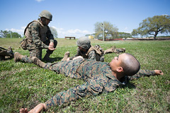 Marine recruits learn to save lives while training on Parris Island (MCRD Parris Island, SC) Tags: marines marinecorps usmc recruit parrisisland bootcamp drillinstructor mcrd parris recruitdepot pi pisc mcrdpi recruittraining basictraining drill di graduation grad eastern recruitregion err recruiter sc unitedstates
