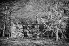 Skeletal Remains (ShrubMonkey (Julian Heritage)) Tags: rhosydd quarry managers house conglog cwmorthin slate disused derelict abandoned forgotten ruin ruined eerie landscape valley wales building secluded isolation mountains snowdonia sonyalpha plascwmorthin