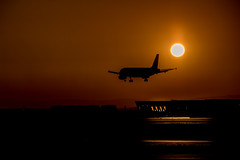 In the Air Tonight (marionrosengarten) Tags: airport frankfurt aircraft plane sunset sundown shine glistening silhouette nikon sigma18125f56 golden flight landing
