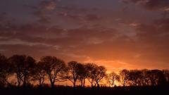 Eerste Paasdag, zonsopkomst (corrie.nijenmanting) Tags: zonsopkomst sun