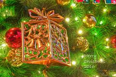 聖誕節 Christmas (ReFinism) Tags: taiwan exploretaiwan instataiwan beautifultaiwan iformosa iseetaiwan amazingtaiwan vscotaiwan vsco vscolike bpintaiwan igerstaiwan instatravel taiwanlandscape discovertaiwan flickrtaiwan flicklandscape canon canon650d 650d canontaiwan christmas decoration light christmastree