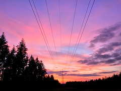 Pink & Purple Sunset (Marc Sayce) Tags: pink purple sky skies power lines pylon woolmer ranges forest conford whitehill longmoor south downs national park hampshire sunset sundown trees april spring 2017