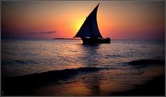 cap sur la pleine mer, ils reviendront demain... (Save planet Earth !) Tags: sea zanzibar boat amcc bateau ocean travel voyage kodak tanzanie