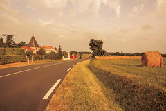 _Q9A5523 (gaujourfrancoise) Tags: france southwest sudouest charente fields champs été summer ocher ocre