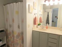 6 Master Bathroom