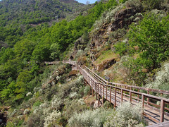 Pasarela Río Mao (Paco Avila) Tags: mao pasarelas galicia ribeirasacra