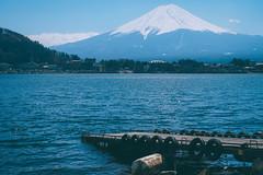 Lake Kawaguchiko 河口湖|富士山 Fujisan (里卡豆) Tags: lake kawaguchiko 河口湖 富士山 fujisan olympus penf 日本 關東 tokyo 東京 japan kanto 25mm f12 pro 2512pro