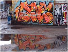little novice (kurtwolf303) Tags: graffiti person novice building gebäude colorful farbig bunt sport taekwondo berlin germany deutschland door tür entrance eingang reflections spiegelungen wasser water pfütze puddle olympusem1 omd microfourthirds micro43 systemcamera mirrorlesscamera spiegellos mft strasenfotografie streetphotography unlimitedphotos urbanlifeinmetropolis urban stadt city 250v10f 500v20f kurtwolf303 topf25 topf50