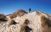 Up, up and away ... (Poul_Werner) Tags: danmark denmark råbjergmile skagen dune easter klit påske northdenmarkregion dk