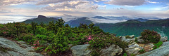 Linville Gorge Skyline (snapdragginphoto) Tags: sky fog northcarolina linville linvillegorge tablerock hawksbillmountain blackmountainrange wisemansview carolinarhododendron