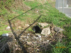 IMG_0935 (Stormwater Maintenance, LLC) Tags: trash litter problem standingwater grasschannel