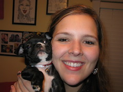 Danielle & our baby pup (krisjaus) Tags: dogs puppy bostonterrier puppies buddy smalldogs newpuppy bostonterriers babydogs krisjaus danielleeberhart
