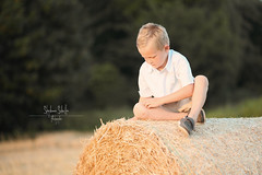 Boy In The Field (tagdrei) Tags: portrait sun cute face field yellow shirt backlight landscape gold evening corn bokeh pastel smooth calm blond silky canon85mmf18 boyyoung canon5diii