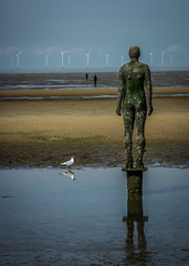 Antony Gormley's Another Place (Eileen Wilkinson (Vistna)) Tags: lancashire crosby anthonygormley