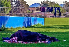 Sleeping At The Park (Watercolour) (Jo Zimny Photos) Tags: park sleeping fence person laundry homelss odc odcdiscovery