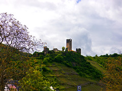 photo - Burg Metternich, Beilstein (Jassy-50) Tags: castle germany photo vineyard ruins terrace burg mosel moselle moselriver moselvalley beilstein metternich beilsteincastle moselleriver burgmetternich castlemetternich germany2013 terracedvineyard