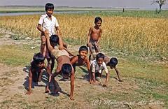 Chidhood Horse Riding editing web (M. A. Salim Photography) Tags: rural play bangladesh horseriding chidhood