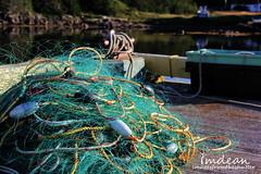 entangled... (Tina Dean) Tags: fishing harbour cove wharf atlanticocean hillgrade newfoundlandandlabrador tinadean imagesfromtheshutter tmdean tinagfw