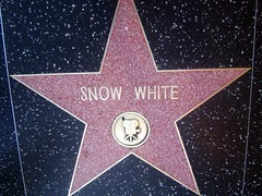 """Snow White Star • <a style=""""font-size:0.8em;"""" href=""""http://www.flickr.com/photos/109120354@N07/11047775343/"""" target=""""_blank"""">View on Flickr</a>"""