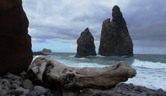 THE ISLAND OF MADEIRA (Keith Wilko) Tags: tree portugal coast scenery surf waves pebbles cliffs driftwood naturalbeauty madeira atlanticocean isandofmadeira