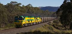 Charbon Arrival (Thomas Worley) Tags: railroad field train centennial branch southern valley nsw western fields ssr cb coal cey hopper charbon shorthaul capertee phth kandos c44 cb02 cb01 clandulla c44aci visio