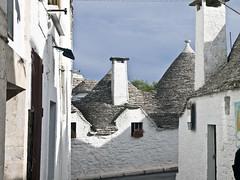 Alberobello # 3 (schreibtnix on' n off) Tags: italien italy travelling reisen italia roofs trulli puglia worldheritage weltkulturerbe alberobello dcher olympuse5 viaducadaosta schreibtnix