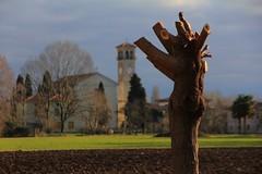 waiting for a new life (bob_52) Tags: alberi chiesa campagna friuli coseano