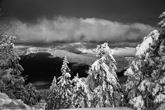 Wurmberg, Harz (Foto-Wandern.com) Tags: harz wurmberg winter schnee wolken landschaft sonne ausblick blackwhite