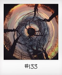 "#DailyPolaroid of 8-2-14 #133 • <a style=""font-size:0.8em;"" href=""http://www.flickr.com/photos/47939785@N05/12413645425/"" target=""_blank"">View on Flickr</a>"
