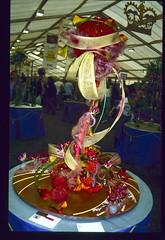 """Mirage"" by Pamela Askew (aciamax) Tags: sweet nursery flower art rose gardens box dancing secret display dreams end will shadows floral arranging miniatures faries illusions rainbows mirage pandoras wisp"