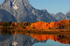 Oxbow Bend (Erazzphoto) Tags: travel vacation tourism landscape photography nikon ngc explore flickraward5