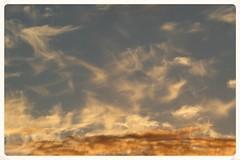 Windblown sunset fragments (Zelda Wynn) Tags: sunset weather clouds auckland cloudscape troposphere fragments newlynn zeldawynnphotography
