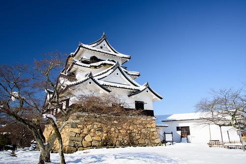 彦根城9・Hikone Castle